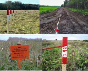 Процедура выноса в натуру границ земельного участка на местности